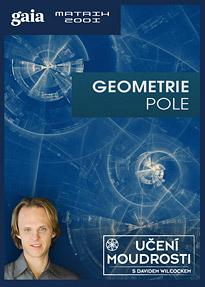 Geometrie pole